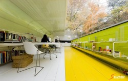 Thiết kế nội thất văn phòng làm việc thoải mái mà nổi bật