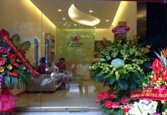 Thiết kế thi công nội thất thẩm mỹ viện & spa Linh Anh