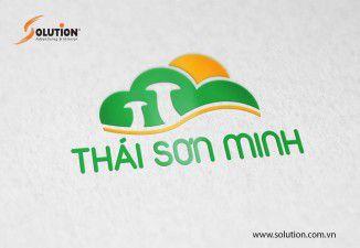 Thiết kế Logo Công ty TNHH Thái Sơn Minh