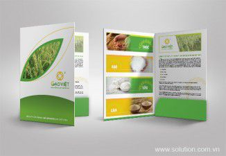 Thiết kế bộ Sales kit Gạo Việt