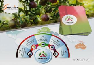 Thiết kế profile Công ty Cổ phần NAFOODS GROUP ấn tượng và đẹp mắt